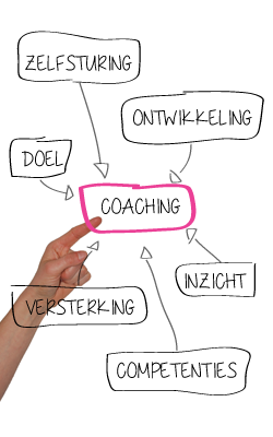 individuele coaching, team coaching, team intervisie, bedrijfscoach, Avand coaching